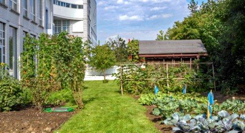 urban farming gem seanbau auf dem dach von zinco gmbh. Black Bedroom Furniture Sets. Home Design Ideas