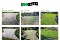 Easygreen Wollrasen